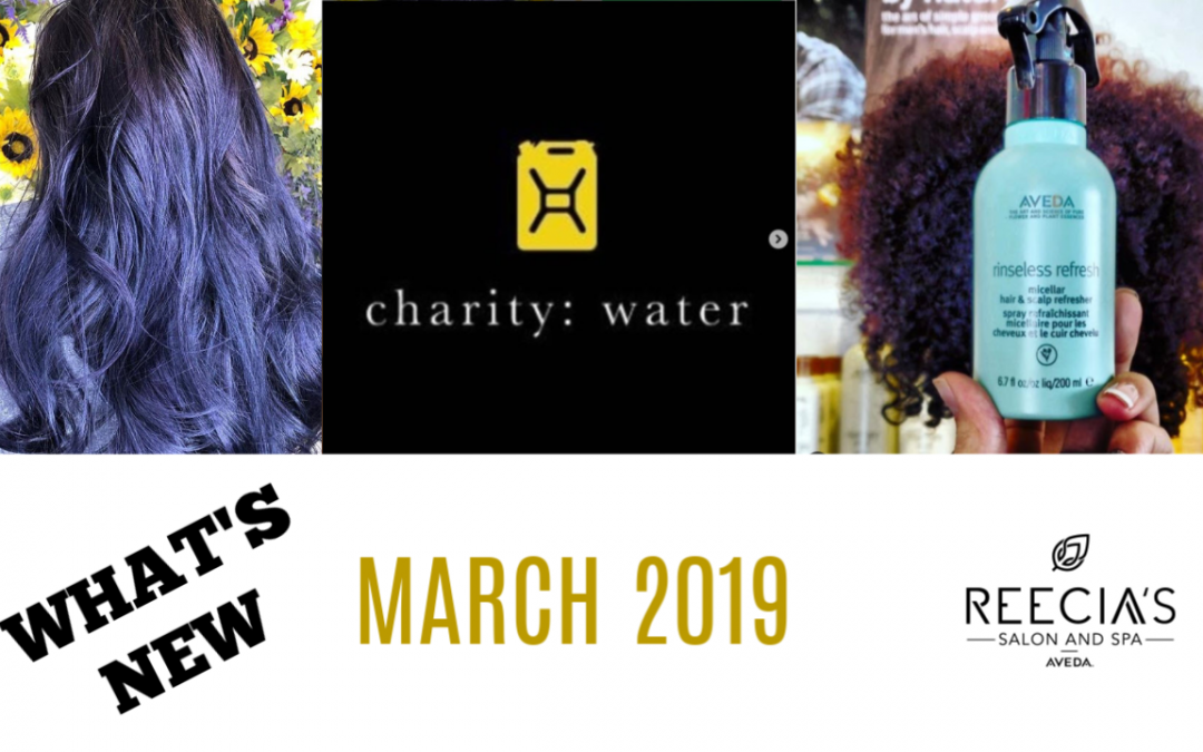Our March 2019 Highlights: Aveda Shine Treatments, Aveda Water Month 2019 , Before and Afters, Meet Our Team