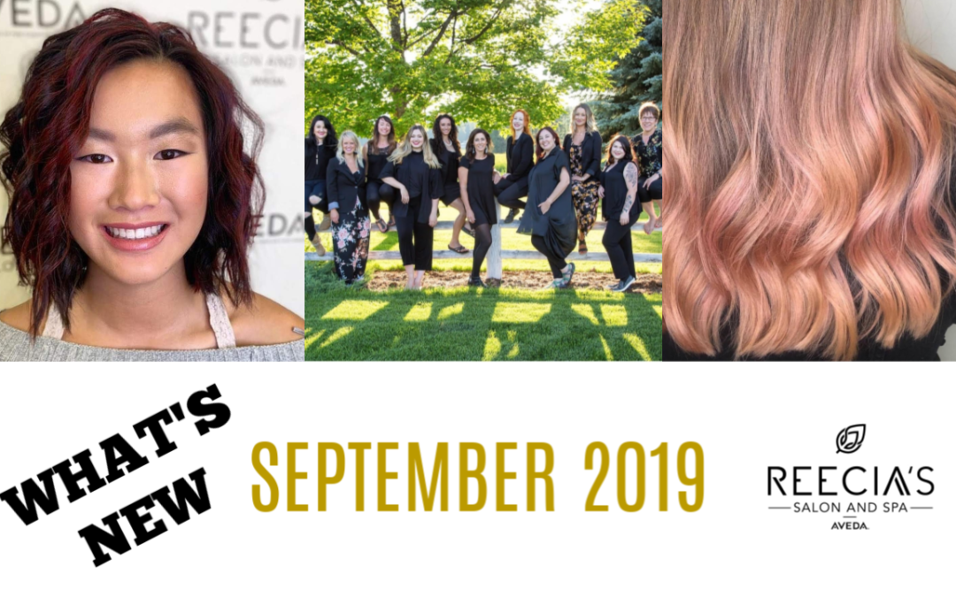 Our September 2019 Highlights: Microblading and Brow Enhancement, Feed My Lips Color Balm, Before and Afters