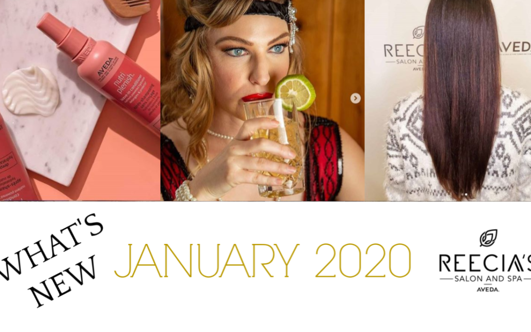 Our January 2020 Highlights: Valentine's Day Gift Sets, Nutriplenish Hair Hydration, Winter Carnival 2020, Semi Permanent Brows, Before and Afters