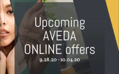 Reecia's Salon – Upcoming ONLINE Aveda Offers and Savings – 9.28.20 – 10.4.20