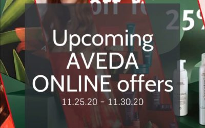 Reecia's Salon – Upcoming ONLINE Aveda Offers and Savings – 11.25.20 – 11.30.20