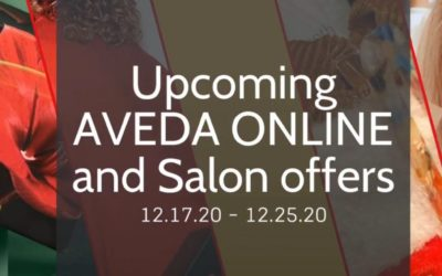 Reecia's Salon – Upcoming ONLINE and Salon Aveda Offers and Savings – 12.17.20 – 12.25.20